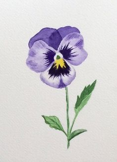 Pansy Tattoo, Violet Tattoo, Flower Tattoos, Watercolor Flowers, Watercolor Paintings, Watercolour, Dessin Old School, Botanical Art, Pansies
