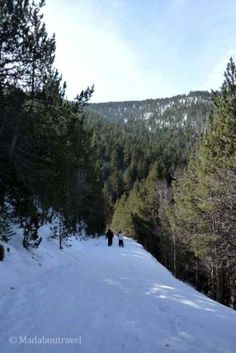 Snow Shoes excursion in Espot, Catalan Pyrenees Catalonia Spain