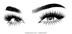 Similar images, stock photos, and vector graphics of hand-drawn female dressing table with perfectly shaped eyebrows and extra full eyelashes. Idea for business card, typography, vector graphic.Perfect salon look - Eyebrows Sketch, Fresh Makeup Look, Makeup Illustration, Eyelash Logo, Lashes Logo, Natural Eyebrows, Sexy Makeup, Eye Art, Creative Makeup