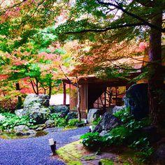 しょうざん庭園 京都の紅葉 穴場☆ 20