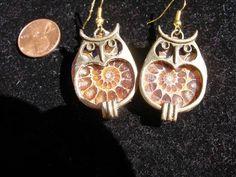 Earrings ammonite fossils bronze owl  frames  by TheCreativeBlock
