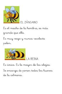 Menta Más Chocolate - RECURSOS y ACTIVIDADES PARA EDUCACIÓN INFANTIL: Libro de las ABEJAS Blended Learning, Bee Theme, Spanish Language, This Or That Questions, Education, Chocolate, Delaware, Kids Psychology, Insects