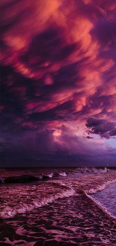 Purple Beach Sunset   La Beℓℓe ℳystère