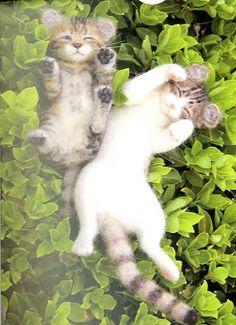 Midori Nakayama's Needle Felting Realistic Cats Post Card Art Book | eBay