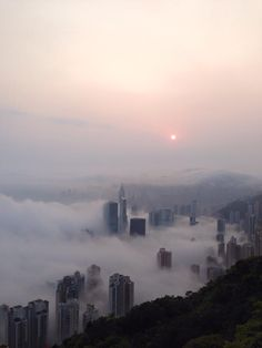 Amateur photographer captures stunning images of Hong Kong shrouded in fog