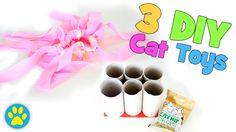 3 Super Simple DIY Cat Toys