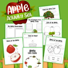 Learn about an apple life cycle with these fun printable activity sheets! The life cycle of an apple tree is such a fun activity for fall! This makes for a fun learning activity in your classroom and can be used in your fall themed centers. Fall Preschool Activities, Apple Activities, Fun Activities To Do, Interactive Activities, Holiday Activities, Fun Learning, Learning Activities, Apple Art Projects, Apple Life Cycle