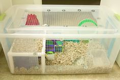 Hamstermania: Caixas Organizadoras
