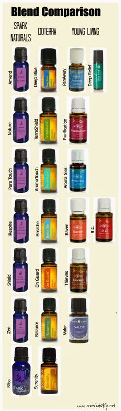 Life Inside Nickie's Little Bubble: Beginner's Guide To Essential Oils