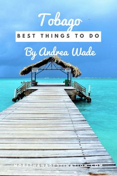 Discover Tobago- The Best Things to do in Tobago, Best time to Visit, Tobago& Best Beaches, Snorkel Buccoo Reef and Nylon Pool Source The post Discover Tobago: The Best Things to do on the Island appeared first on Caribbean Islands. South America Destinations, Top Travel Destinations, Places To Travel, Destin Beach, Beach Trip, Beach Travel, Best Travel Guides, Travel Tips, Travel Ideas