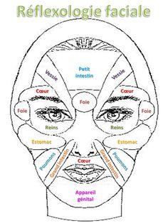 Réflexologie faciale simplifiée en français. A imprimer.