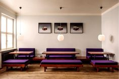 dining - purple and pendants - mogg & melzer