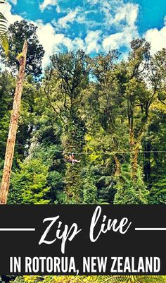 Where to zipline in New Zealand! Zip line through native New Zealand forest in the North Island adventure capital, Rotorua!  Rotorua Canopy Tours is one to add to your NZ holiday itinerary, a kiwi bucket list item for tourists and locals alike! What to do in Rotorua: zip-line! #NZMustDo