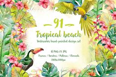 Tropical beach PNG watercolor set By MyStocks