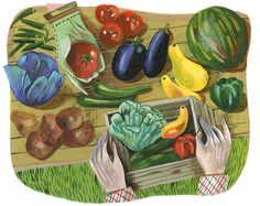 As Community Supported Agriculture becomes more and more competitive, it requires some thoughtful planning and execution to get and keep members. Indian Eggplant Recipes, Community Supported Agriculture, Modern Farmer, Farm Business, Container Vegetables, Urban Agriculture, Wedding Humor, Book Activities, Architecture Art