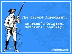 The Second Amendment.  America's Original Homeland Security.