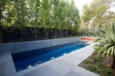 Bluestone pool coping - Cycas Landscapes Backyard Pool Designs, Small Backyard Pools, Pool Decks, Pool Landscaping, Backyard Ideas, Small Swimming Pools, Small Pools, Swimming Pool Designs, Lap Pools