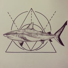 A pointillism / stippling (dots) Sharpie and Fiber Castell / Sakura micron pen drawing of a shark for Shark Week.  Inspired by my interest in geometric tattoo style art.