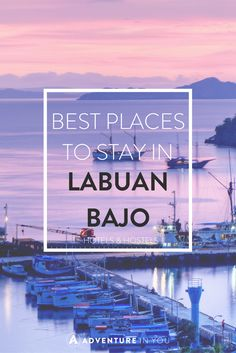 Planning a trip to Komodo National Park and thinking where to stay? Here are the best places to stay in Labuan Bajo, from budget to luxury! Best Places In Bali, Beautiful Places In The World, Top Hotels, Best Hotels, Komodo, Gili Island, Labuan, Beautiful Islands, Asia Travel