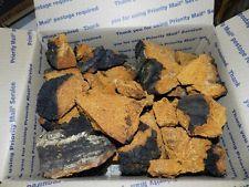 Wild Chaga Mushroom 3.8 lbs dried chunks