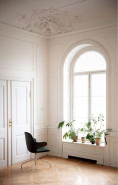 Altbau Apartment | plants