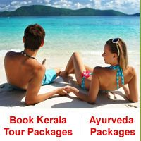keralatravels.com Offering customized Tour packages in kerala, Honeymoon packages,  kerala Holiday packages, Hotels and Resorts Booking packages, kerala Taxi Booking,wayanad home stays Packages