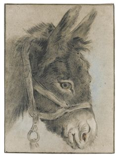 Study of a Donkey's Head, attributed to Jean Baptiste Huet, Paris 1745-1811