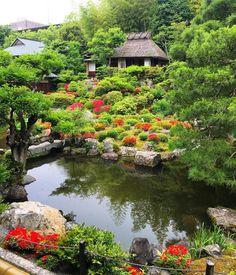 いつかの京都旅行。  路地裏散歩中にふらりと訪れた等持院。  夢窓国師の庭園は息を飲む美しさ。  池の中央は蓮の花を模した小島。  小雨に濡れた緑がイキイキと。  #japan  #kyoto  #tojiin  #tojiintemple  #temple  #japanesetemple  #garden  #japanesegarden  #musokokushi  #japanesetraditional  #japanesestyle  #natur  #color  #green  #amazing