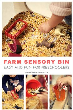 This farm sensory bin is super easy to put together, and preschoolers love it! Fine motor skills are strengthened as corn kernels are transferred. Fall Preschool Activities, Sensory Activities Toddlers, Toddler Preschool, Toddler Crafts, Preschool Classroom, Preschool Farm, Exercise Activities, Library Activities, Preschool Letters
