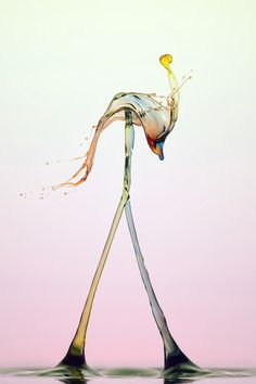 High-Speed Photography Turns Water Droplets Into Liquid Sculptures
