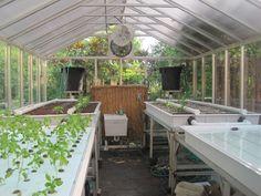 Serre aquaponique - Agriculteur Urbain