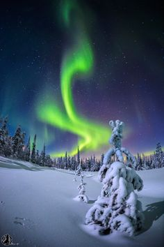 phantastrophe: The flame | Pyhä-Luosto National Park, Finlandby Nicholas Roemmelt (Website)