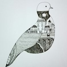 The pigeon full of town
