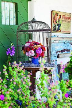 California's Rose Story Farm