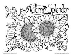 Autumn coloring page for adults and grown ups. Autumn splendor printable coloring page with sunflowers and oak leaves to color with fall hues. Drawn by han
