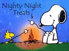 Nighty Night Treats