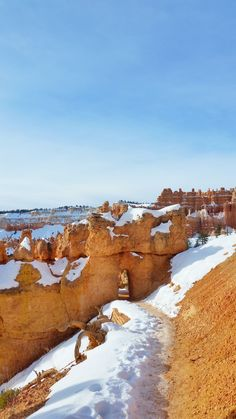 What's it like to winter hike the hoodoos in Bryce Canyon on Queens Garden Trail? Free Vacations, Pumpkin Recipes, Fall Recipes, Winter Hiking, Winter Travel, Fall Winter, Us National Parks, Winter Photos, Paisajes