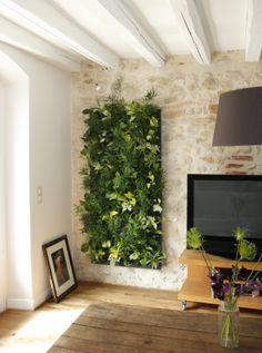 Mur végétal Flowall sur mur en pierre x6 structures