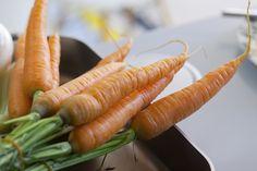 Honka Lumi. Finland, Vegetables, Modern, Food, Meal, Veggies, Essen, Vegetable Recipes