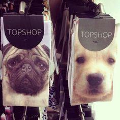 Topshop Pug and Labrador Retriever socks. Xx
