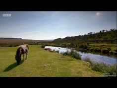 Escape to the Country - Devon [Series 15: 66] - YouTube