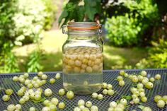 Victoria's gooseberry gin recipe makes the most of these gloriously tangy berries, perfect for a host of refreshing cocktails.