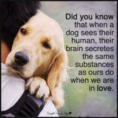Love this, we mean the world to our pets ❤