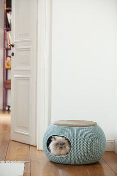 The Cozy Pet Home - a snug nook for your pets to call their own! http://za.keter.com/562388