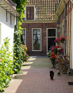 Google Afbeeldingen resultaat voor http://static.zoom.nl/B3D23B1B89A6D2799BD857CA96C67E6F-hofjes-in-groningen.jpg