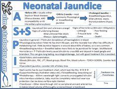Neonatal Jaundice | almostadoctor.com - free medical student revision notes