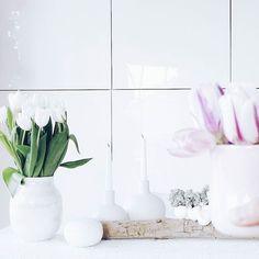 Ein Hoch auf's Wochenende... Einen schönen Abend für euch und gute Nacht! . . The last two day were pretty weird. So tomorrow there will be a better day. . . . #friyay #tgifridays #freutag #hochdiehändewochenende #flowers #flowermagic #flowerpower #flowerslovers #flowerstagram #instaflowers #flowersofinstagram #flowersmakemehappy #flowerstyling #flowerblogger #flowerpowerbloggers #instablooms #blooming #tulpen #tulips #ichliebetulpen #tv_allwhite @tv_allwhite #momentsofmine #finditliveit…