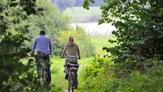 Radfahrer an der Elbe bei Lauenburg