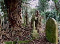 Risultati immagini per cimiteri bellissimi