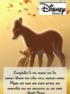 Everything in the forest has its season. Where one thing falls, another grows. Maybe not what was there before, but something new and wonderful all the same.- Bambi's Mother